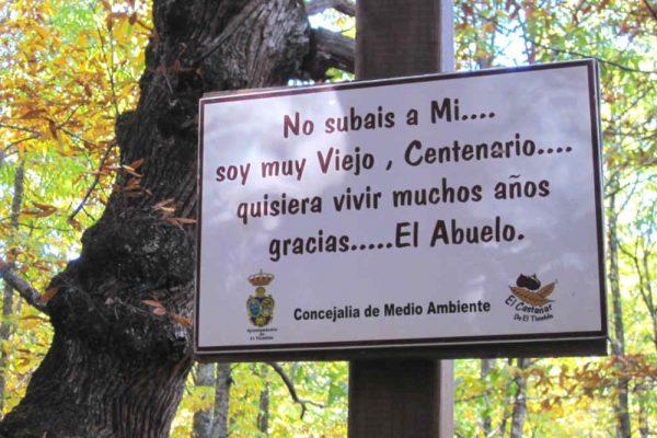 'El Abuelo'